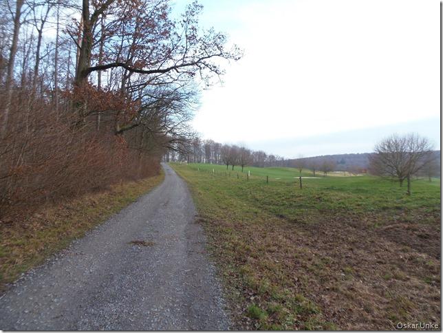 Wössinge Wald beim Golfplatz