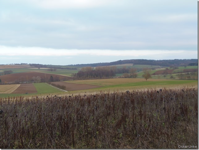 Wössinger Landschaft