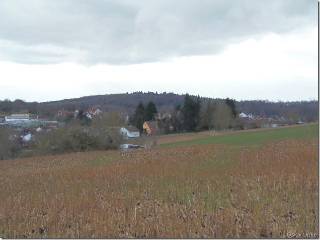 Blick auf Wössingen und dem Hauweg