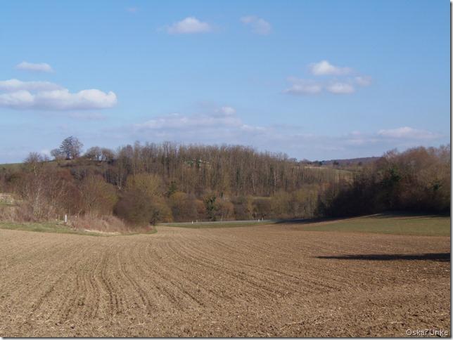 Feldlandschaft