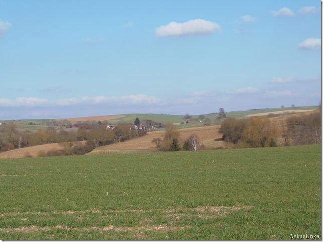 Blick auf Sallenbusch