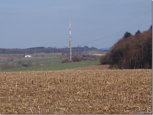 Blick zurück nach Wössingen
