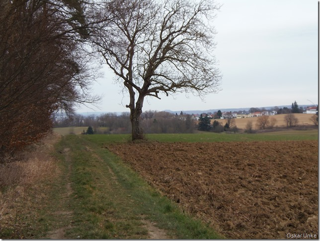 Feldwaldweg