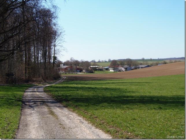 Bauernsiedlung Binsheim