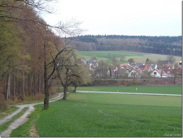 Waldweg bei Dürrenbüchig