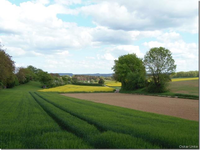 Landschaft zwischen Gondelsheim Helmsheim