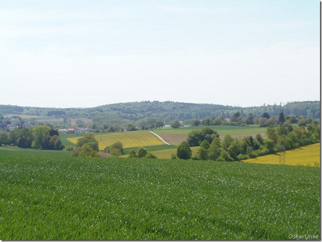 Wössinger Feldlandschaft
