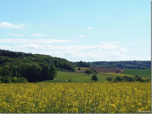Landschaft zwischen Dürrenbüchig und Wössingen
