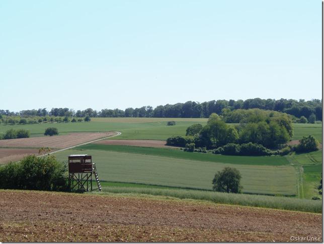 Weingartener Flurlandschaft