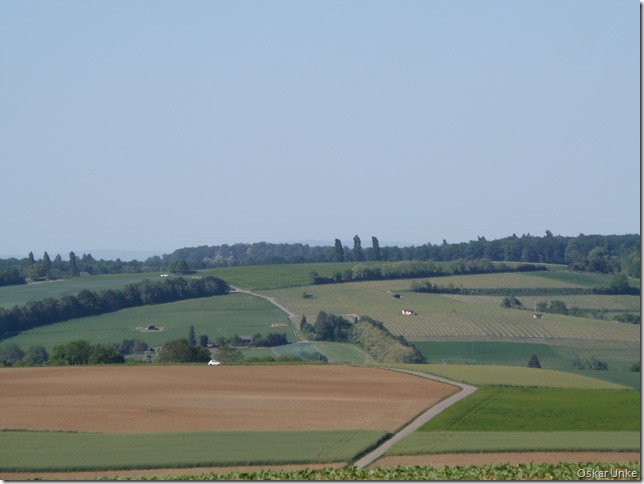 Zwischen Weingarten und Jöhlingen