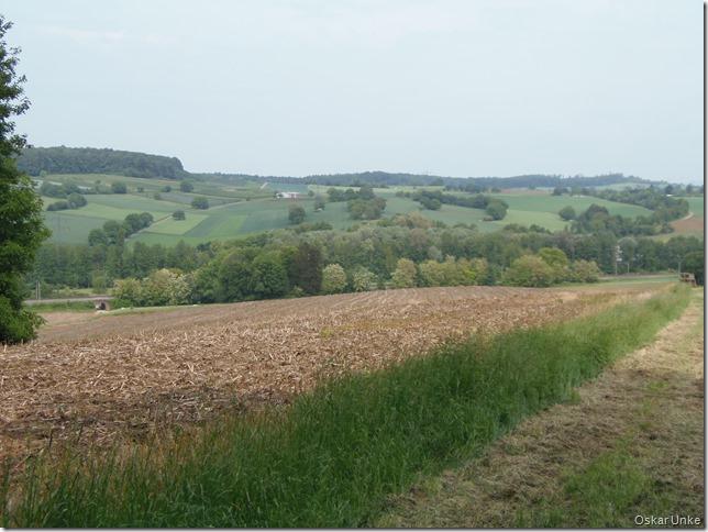 Blick auf die Landschaft
