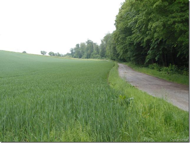 Wöschbacher Weg