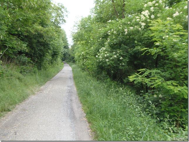 Durlacher Weg