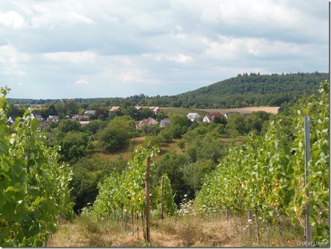 Blick auf Diefenbach