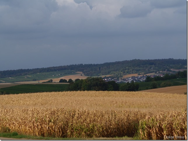 Blick nach Heidelsheim