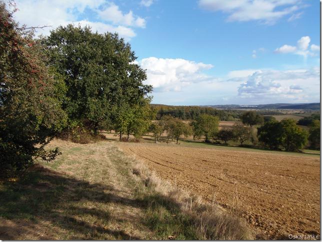 Feld und Wiesenlandschaft