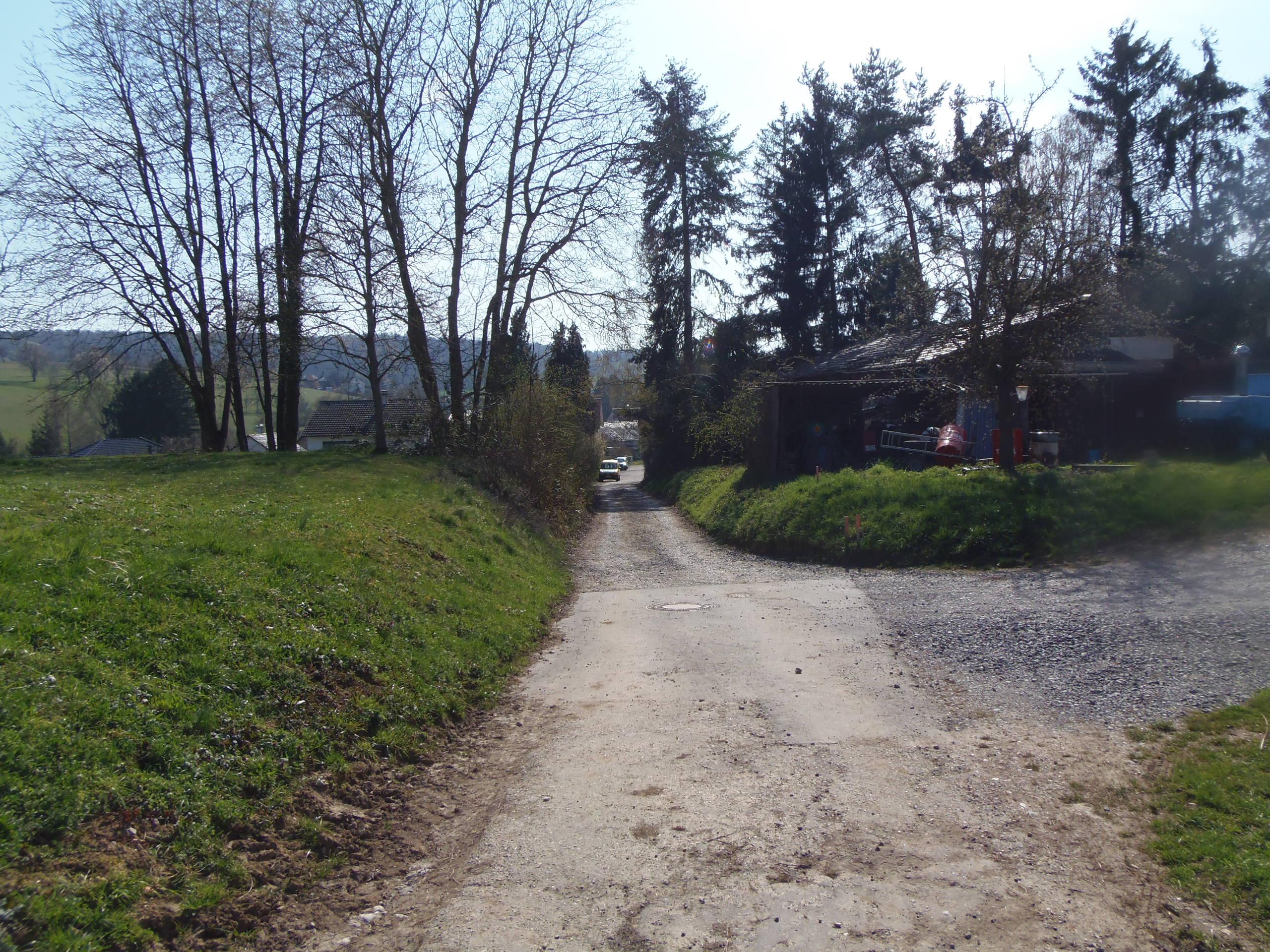 Aus Wössingen heraus in das weite Feld / Natur