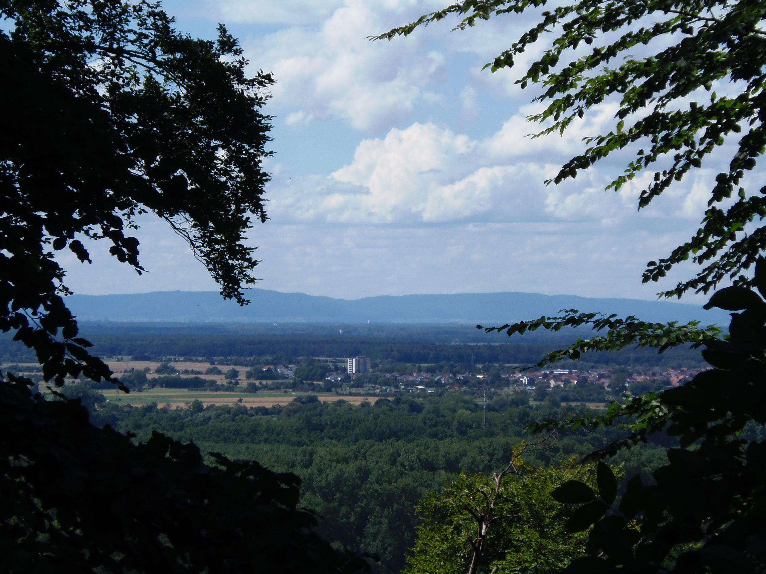 Nochmals Blick in die Rheinebene