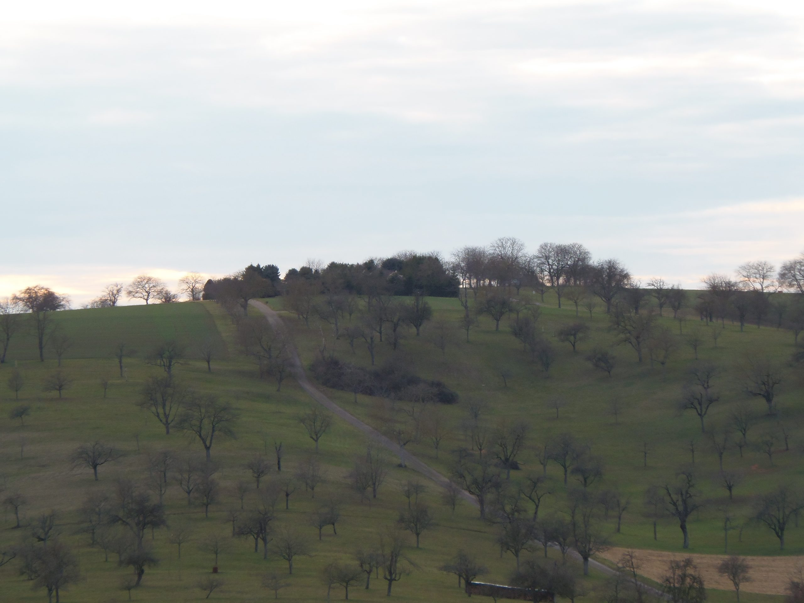 Blick auf den Lugenberg